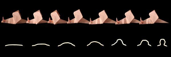 The animated origami in the snail and the worm
